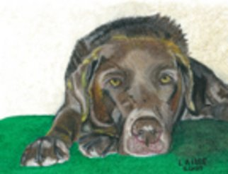 Lauren Allee; Rusty In Repose, 2007, Original Pastel Oil, 9 x 11 inches. Artwork description: 241  Hand- painted portrait of chocolate labrador retriever at rest.  Oil pastel on heavy weight, acid free paper. ...