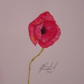Ghassan Rached, , , Original Watercolor, size_width{Lonely_Poppy-1028653056.jpg} X 24 cm