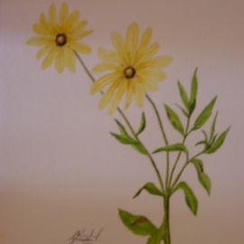 Ghassan Rached, , , Original Watercolor, size_width{Two_Yellow_Flowers-1028651894.jpg} X 32 cm
