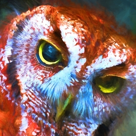 Db Jr, , , Original Digital Painting, size_width{red_owl-_winner_of_artpop-1492974205.jpg} X 24 inches