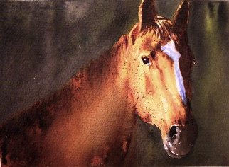 Ivan Grozdanovski; Portrait Of A Brown Stallion, 2013, Original Watercolor, 18 x 13 cm. Artwork description: 241                    portrait of a brown stallion  landscape               Cottage in early spring                 ...