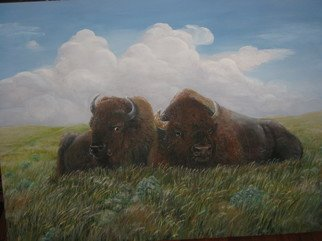 Heidi Bacon; Bison Afternoon, 2011, Original Printmaking Giclee, 30 x 40 inches. Artwork description: 241  Bison relaxing on a windswept prairie. Giclee reproduction on canvas from an original acrylic painting.            ...