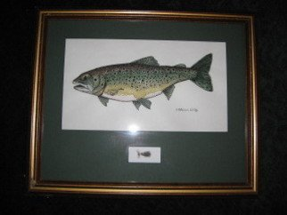 Heidi Bacon; Brook Trout, 1995, Original Printmaking Giclee, 16 x 20 inches. Artwork description: 241  I did a series of fish upon request from my sister who, at the time, was President of the Nebraska Chapter of the American Fisheries Society. This Brook Trout is a Giclee reproduction on canvas from an original pen & ink drawing with a watercolor wash.  Fly not ...