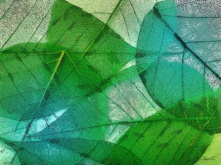 Heloisa Castro; HC0272, 2018, Original Computer Art, 47.2 x 35.4 inches. Artwork description: 241 leaves, nature, green, painting, art, color, abstract, nature...