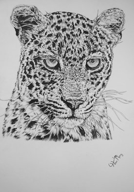Hiten Mistry; Leopard, 2014, Original Drawing Other, 25 x 30 cm. Artwork description: 241  art, leopard, leopard portrait, leopard drawing, animals, wild cats, spots, leopard fur, leopard drawing, wildlife, animal hunters, whiskers, hiten mistry     ...