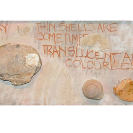 Hope Brooks, , , Original Collage, size_width{Shells_and_Stones_revisited_panel_1-1205524410.jpg} X 8 inches