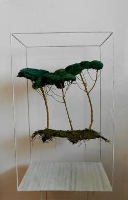 Houda Khalladi; Installation Forest, 2013, Original Installation Indoor, 100 x 70 cm. Artwork description: 241     nature    ...