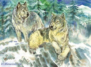 Igor Moshkin; Family Of Wolves, 2003, Original Watercolor, 45 x 35 cm. Artwork description: 241 watercolor, paper, wildlife, green and blue,  Family of wolves , winter, forest, mountains and stones...