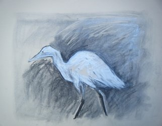 Jane Spence; Egret , 2010, Original Drawing Charcoal, 68 x 55 cm.