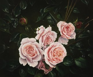 Jan Teunissen; English Roses, 2008, Original Painting Oil, 60 x 50 cm. Artwork description: 241  English rosesOilpainting on board...
