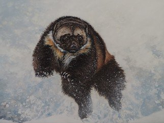 Jeff Cain; Ptarmigan Hunter, 2015, Original Painting Other, 60 x 46 cm. Artwork description: 241    Adult female wolverine ( Gulo g gulo) in northern Sweden.      ...