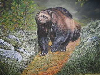 Jeff Cain; Russian Wolverine, 2015, Original Painting Other, 76 x 56 cm. Artwork description: 241  Adult male wolverine ( Gulo g gulo) hunting musk deer in boreal forest in Stolby Reserve, Russia.   ...