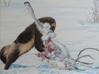 Jeff Cain; Tundra Scavenger, 2015, Original Painting Other, 46 x 60 cm. Artwork description: 241 Adult female wolverine ( Gulo g sibricus) feeding on a frozen reindeer carcass in NE Russia. ...
