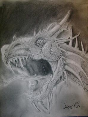 James Newton; Dragon, 2008, Original Drawing Charcoal, 14 x 17 inches. Artwork description: 241  Dragons are images that seem to stay with us from our childhood.  They inspire worlds where anything is possible.  Original CharcoalOriginal Charcoal...