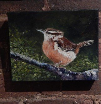 Jeffrey Foster Thomas; The Entertainer, 2014, Original Painting Acrylic, 10 x 10 inches. Artwork description: 241  Carolina wren in acrylic. Gallery wrapped canvas.  ...