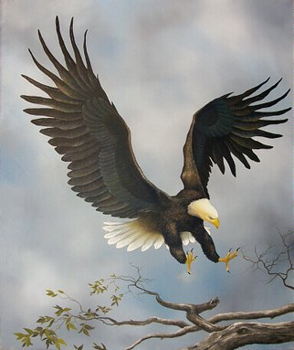 Jerry Sauls; American Bald Eagle, 2006, Original Painting Oil, 20 x 24 inches. Artwork description: 241  This gallant and proud creature, a symbol of America's freedom, dominates the canvas with his wings spread wide as he approaches his intended perch. ...