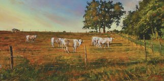 John Gamache; You Do Know We Are Being ..., 2016, Original Painting Oil, 24 x 12 inches. Artwork description: 241 Oil on Linen 12 x 24 - Cattle pasture in FR - late sunny afternoon...