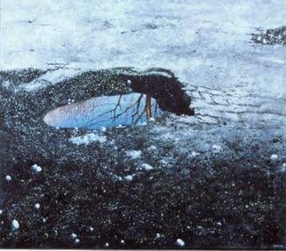 James Gwynne, 'Pot Hole', 1999, original Painting Oil, 80 x 70  x 3 inches. Artwork description: 2307 An ugly pot hole with beauty in the water it holds...