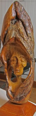 John Clarke; Sleeper, 2006, Original Sculpture Wood, 14 x 25 inches. Artwork description: 241 A sleeping dreamer rests within a black cherry burl...