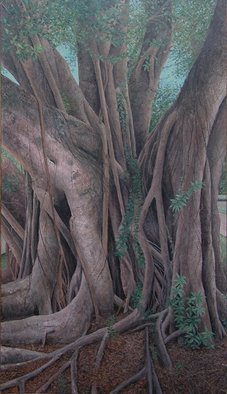James Morin; Banyan Tree Alhambra Navarre, 2002, Original Painting Oil, 40 x 70 inches.