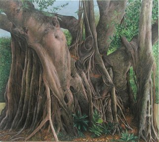 James Morin; Banyan Tree Columbus , 2002, Original Painting Oil, 54 x 48 inches.
