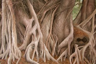 James Morin; Banyan Tree Trunks, 2003, Original Painting Oil, 36 x 24 inches.