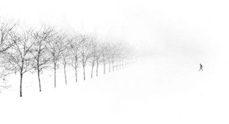 Jim Wright; Midway Plaisance, 1985, Original Photography Black and White, 14 x 11 inches. Artwork description: 241  snow on midway, chicago      ...