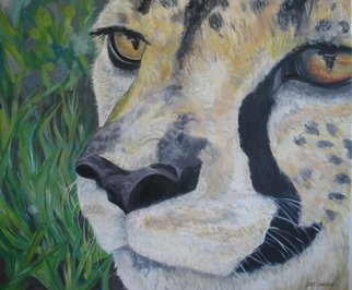 Joey Johnson; Cheetah, 2007, Original Painting Oil, 77.5 x 66.5 cm. Artwork description: 241    Original Oil on canvas painting, contemporary realism. signed by artist needs to be framed can be rolled for shipping. thanks for looking   ...