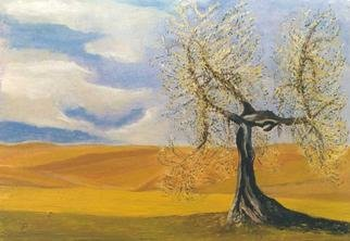 Jean Pierre Vets; Olivier, 1998, Original Painting Oil, 60 x 40 cm. Artwork description: 241 Olive tree in a tuscan landscape ( Italy)...