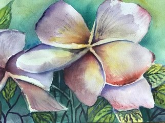 Julie Van Wyk; Plumeria, 2017, Original Watercolor, 16 x 12 inches. Artwork description: 241 Hawaiin plumeria ...