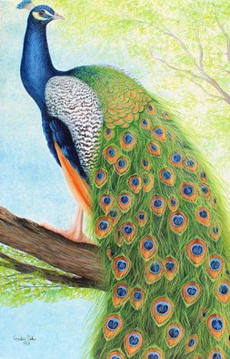 Goutami Mishra; Peacock Sitting On Tree, 2019, Original Painting Oil, 24 x 36 inches. Artwork description: 241 This is a handmade oil painting of a peacock sitting on tree, enjoying beautiful morning. This bird is famous for its beautiful color and feather. The painting enhances beauty and richness of your wall....