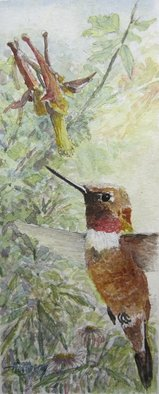 Ken Hillberry; 1 Summer Moment, 2014, Original Watercolor, 4 x 10 inches. Artwork description: 241  an impressionistic capture of a brief moment of the hummingbird beginning the feeding process. . .   ...