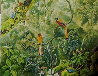 Meenakshi Subramaniam; Malabar Trogons In The Forest, 2015, Original Painting Acrylic, 48 x 72 inches. Artwork description: 241       Bird Art India, Wildlife, Nature , Western Ghats, Kerala, endemic  Butterflies of tropical forests in India  ...