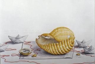 Thomai Kontou; My Agean Sea Shell, 2004, Original Other, 35 x 45 cm.