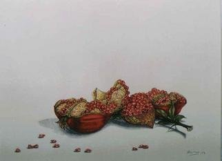 Thomai Kontou;  Pomegranate, 2004, Original Watercolor, 30 x 40 cm.