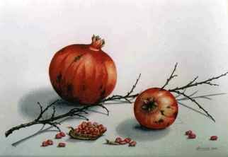 Thomai Kontou; Pomegranates, 2009, Original Watercolor, 40 x 30 cm. Artwork description: 241  Pomegranates cycle ...