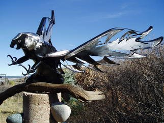 Ivan Kosta; The Eagle Is Landing, 2010, Original Sculpture Steel, 7 x 3 feet. Artwork description: 241  An over - life size bald eagle, fabricated of stainless steel and powder coated steel, with a dramatic display of the typical ferocious look and claws.   ...