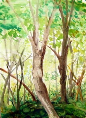 Kristin Morrill; Swamp Queen, 2008, Original Watercolor, 16 x 2024 inches. Artwork description: 241  A tree in the swamp that looks like a woman/ queen ...