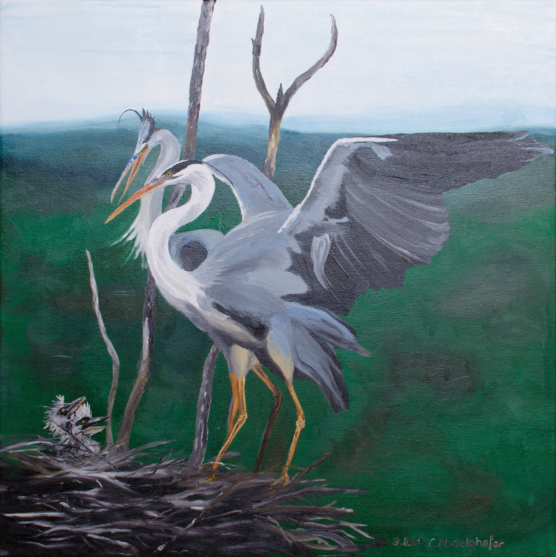 Claudia Luethi Alias Abdelghafar; Grey Herons Family, 2011, Original Painting Oil, 50 x 50 cm. Artwork description: 241 Oilpainting on canvas from a grey herons family up in the trees.  Can you see the little babies on the left side, they are sweet, arent they This painting has a wonderful wooden shadow gap frame.  ...