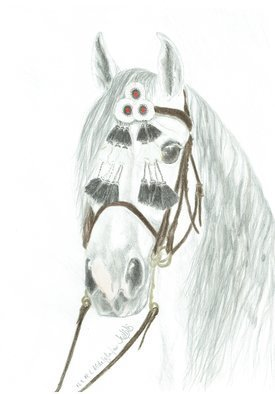 Claudia Luethi Alias Abdelghafar; Andalusian Stallion, 2018, Original Drawing Other, 297 x 420 mm. Artwork description: 241 A wonderful andalusian stallion with his traditional bridle. I love horses and riding horses is a hobby of mine. ...