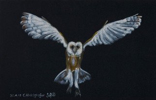 Claudia Luethi Alias Abdelghafar; Barn Owl, 2019, Original Painting, 60 x 40 cm. Artwork description: 241 Who is flying through the night, it is the barn owl and she is looking for something to eat  The size of the painting is without frame 40 x 60 x 2 cm and with frame 43 x 63 x 3 cm, the painting was finished on ...