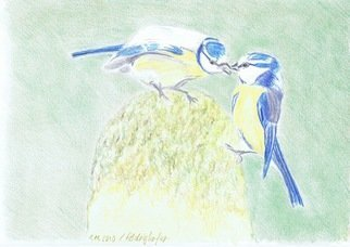 Claudia Luethi Alias Abdelghafar; Bluetit Couple, 2010, Original Drawing Other, 297 x 210 mm. Artwork description: 241 Little nice bluetit couple Drawing with colored pencil on DIN A4 paper...