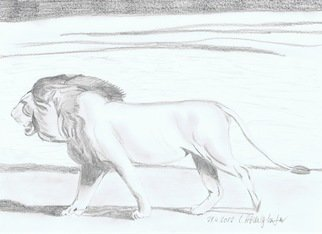 Claudia Luethi Alias Abdelghafar; Lion, 2012, Original Drawing Other, 297 x 210 mm. Artwork description: 241 A lonely lion walking in the hot sun. Drawing with pencil on DIN A4 paper...