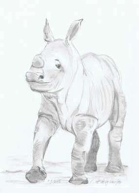 Claudia Luethi Alias Abdelghafar; Sweet Little Rhino Baby, 2013, Original Drawing Other, 210 x 297 mm. Artwork description: 241 Sweet little rhino Baby Drawing with pencil on DIN A4 paper. ...