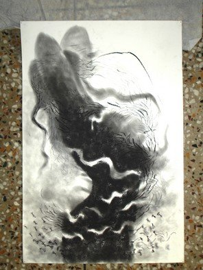 Lalit Pant; Nature, 2006, Original Drawing Charcoal, 18 x 30 inches.
