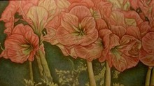 Artist: Peggy Thomas Cacalano's, title: Geraniums Up Close, 2009, Painting Acrylic