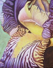 Artist: Peggy Thomas Cacalano's, title: Striped Glory, 2010, Painting Acrylic