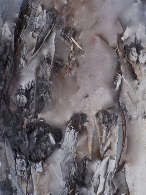 Luise Andersen, 'MIG InsideMe I', 2012, original Digital Art, 21 x 27  x 1 inches. Artwork description: 51411   . . artwork from photograph taken of Eucalyptus Tree Bark. . bring forwards what draws my eyes. . what I see . . the voice I' hear' from the magnificent trees. . which echoes much of voice inside me. .in thumbprint, you can see the photograph. . everything I brought forward in hrs. work. . the ...