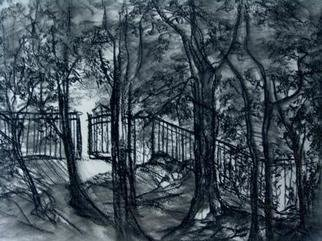 Luise Andersen, 'RETURN', 2006, original Drawing Charcoal, 20 x 15  inches. Artwork description: 72795 . . Went back to same location. . .   love the atmosphere. inspires to draw. . . trees. . . grass. flowers. . birds. . . squirrels. . bugs. . light/ shade. .  warm/ cool. .. Intended to work' Gatepath.' . .  decided to leave it alone for a while and started a diffferent one. .  this. . one. .  You become aware, I allow my mood ...