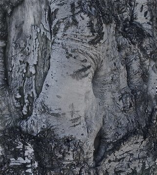 Luise Andersen, 'With The Eyes Of Mignon M...', 2012, original Photography Other, 19 x 25  x 1 inches. Artwork description: 51411     . . tree bark. . . intriguing. . reaches my core. . sends me on voyage of mind. . .. . take your own journey. . .. . did eliminate saturation. . some colors. . and  bright of 'light' reduced . . .  ...